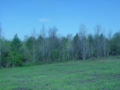 0 Ac. South Carolina Commercial Land