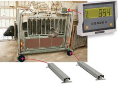 Chute Weigh System