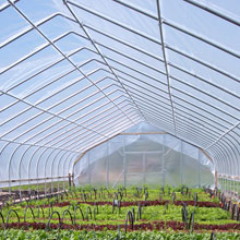 Greenhouse Film, Sun Master®
