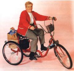 Shopper Electric Trike