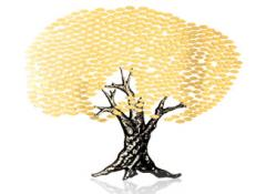 Trees of Life & Donor Trees
