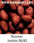 Argentinian Peanut, Groundnut kernels, New 2011