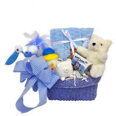 Sweet Baby Boy Gift Set