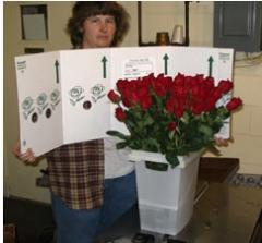 Dillon Floral Valentine ReadyRose