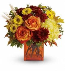 Teleflora's Autumn Expression Bouquet
