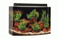 Bowfront 46 System 2 - Built in Filter Aquarium