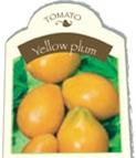Yellow Plum Tomato