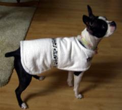 Dog Terry Coats