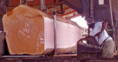 Starke Lumber