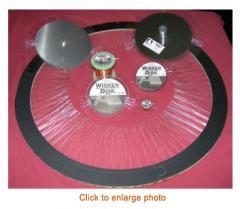 Wisker Disk