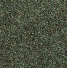 Daily Variety Carpet