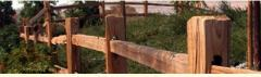 Split Rail Fencing