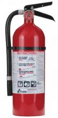Pro 210 Consumer Fire Extinguisher 21005779