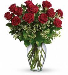 Long Stemmed Red Roses Flowers