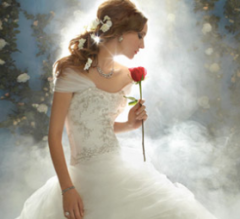 Disney Fairy Tale Bridal