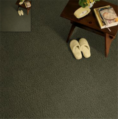Short Story  by  Stainmaster  Silent Path Carpet