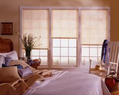 Genesis® Window Shades & Season-Vue®