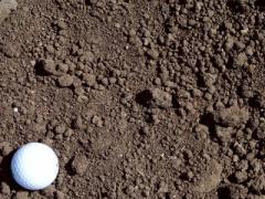 Black Organic Topsoil