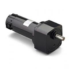 Motors and Gear Reducers