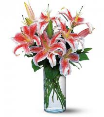 Lovely Lilies
