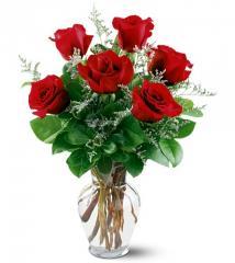 Erika Red Roses