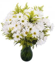 Seasonal Daisy Bouquet