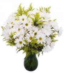 Seasonal Daisy Bouquet
