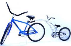 20 inch Pull-Behind Bike