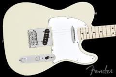 Fender Standard Telecaster Electric Guitar Arctic