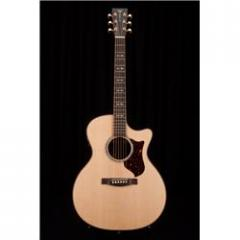 Martin Performing Artist Series GPCPA1