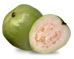 White Hawaiian Guava
