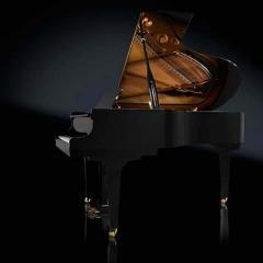 RX-5 BLAK Artist Grand Piano