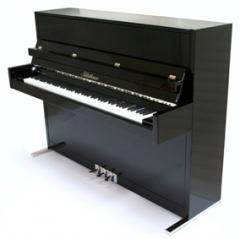 Blüthner Model D - Upright Piano