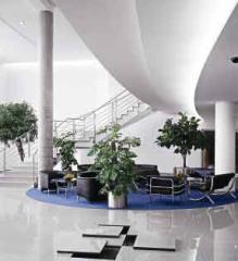 Raised Floors / Access Floors