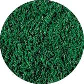 Tifgreen Turfgrass