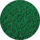 Tifway Turfgrass