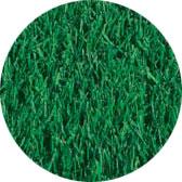 Bluerye Turfgrass