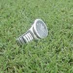 BlueMuda Turfgrass