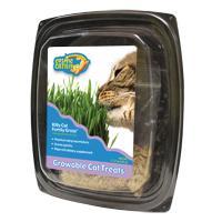 Kitty Cat Family Grass Growable Cat Treat