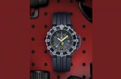 A.1525 Luminox Watch