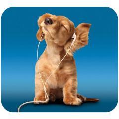Mouse Mat HandStands Dog