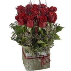 Elegant box of red roses