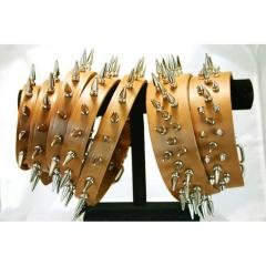 Signature Leather Collars