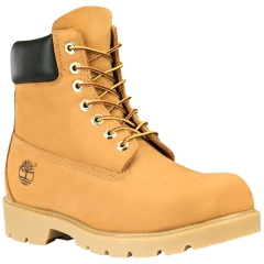 Men's 6-Inch Basic Waterproof Boot with Padded