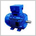 IEC Tru-Metric Motors