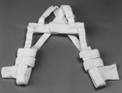Pavlik Harness