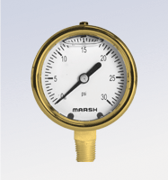 63 mm & 100 mm Forged Brass Gauges
