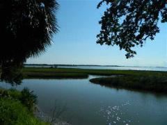 Alligator Drive , Alligator Point FL 32346