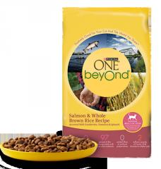 Purina ONE® beyOnd® Salmon & Whole Brown
