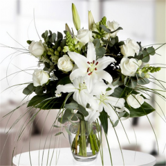 White Lily Rose